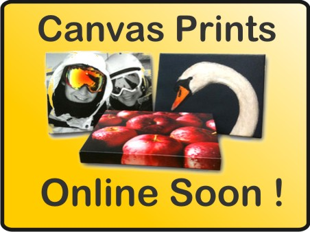 Coming Soon canvas Prints
